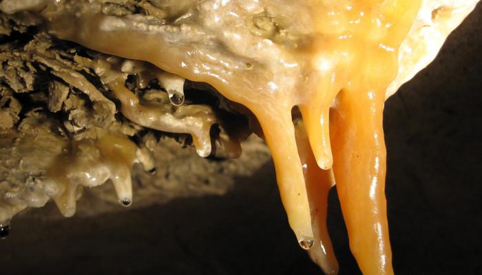 Tropfstein in der Blätterteighöhle