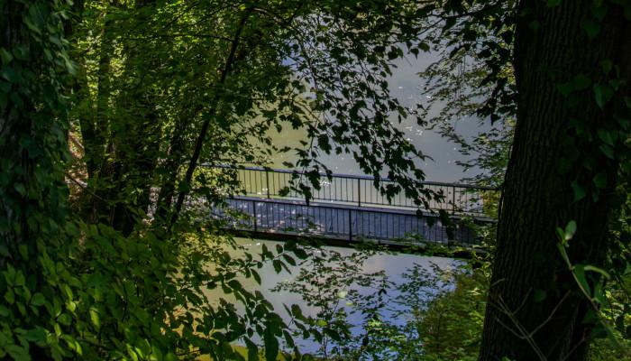 Brücke an der Aachquelle