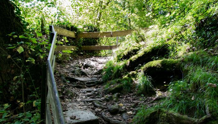 Wanderweg an der Aachquelle